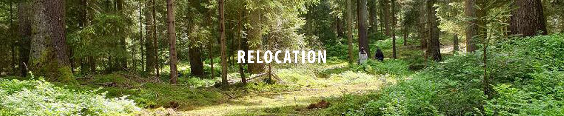 burggrafburggraf-banner-relocation